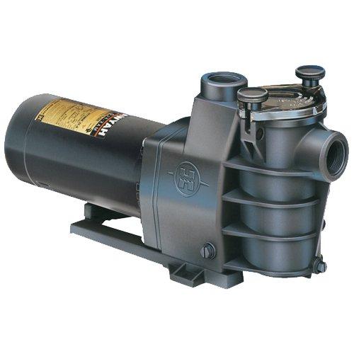 Hayward MaxFlo Pump